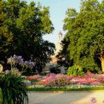 Brühlsche Terrasse - Brühlscher Garten
