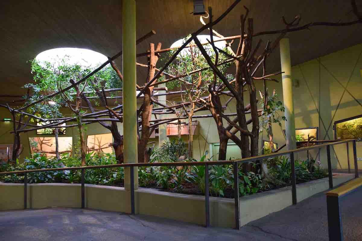 Das Professor-Brandes-Haus im Zoo Dresden (innen)