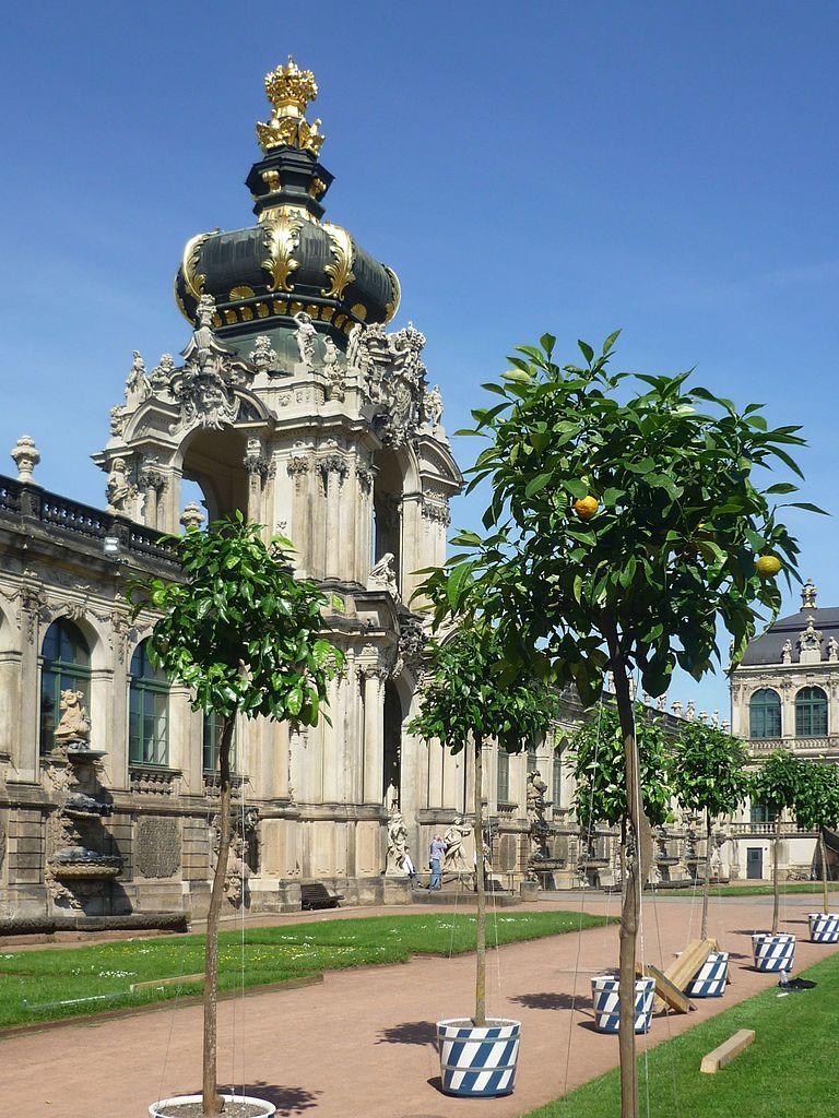 Zwinger Dresden - Die Orangenbäume kehren zurück